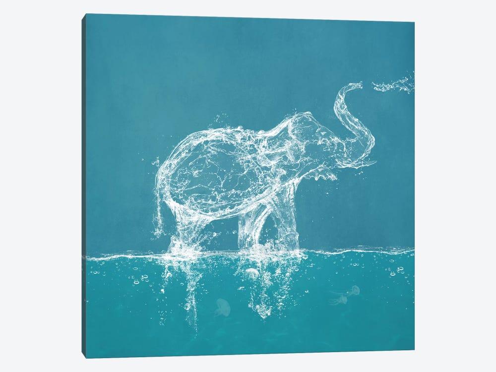 Water Elephant by Paula Belle Flores 1-piece Canvas Artwork
