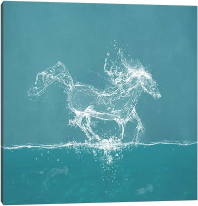 Water Horse Canvas Art Print