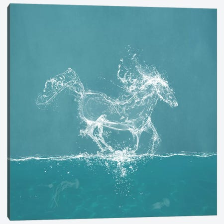 Water Horse Canvas Print #PBF85} by Paula Belle Flores Art Print