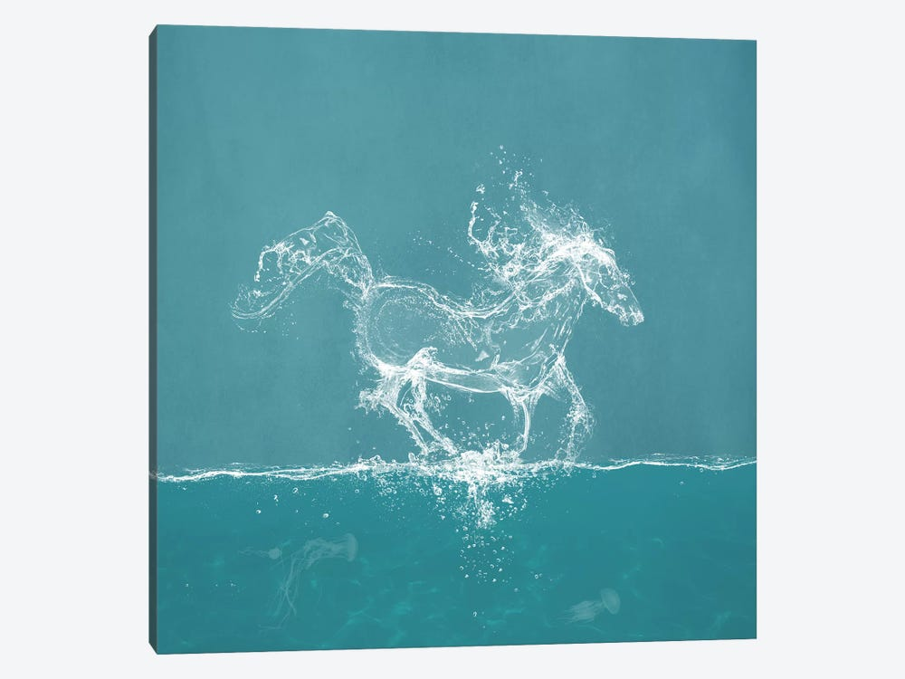 Water Horse by Paula Belle Flores 1-piece Canvas Print