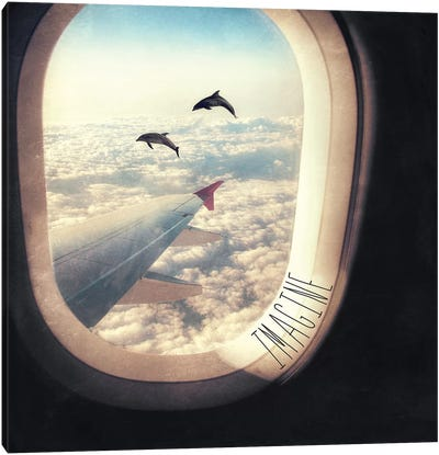 Imagine Flying With Dolphins Canvas Art Print