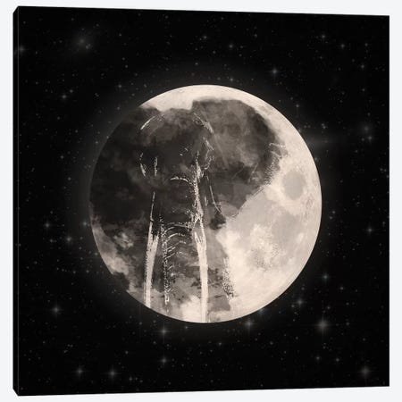 Elephant In The Moon 3-Piece Canvas #PBF9} by Paula Belle Flores Canvas Wall Art