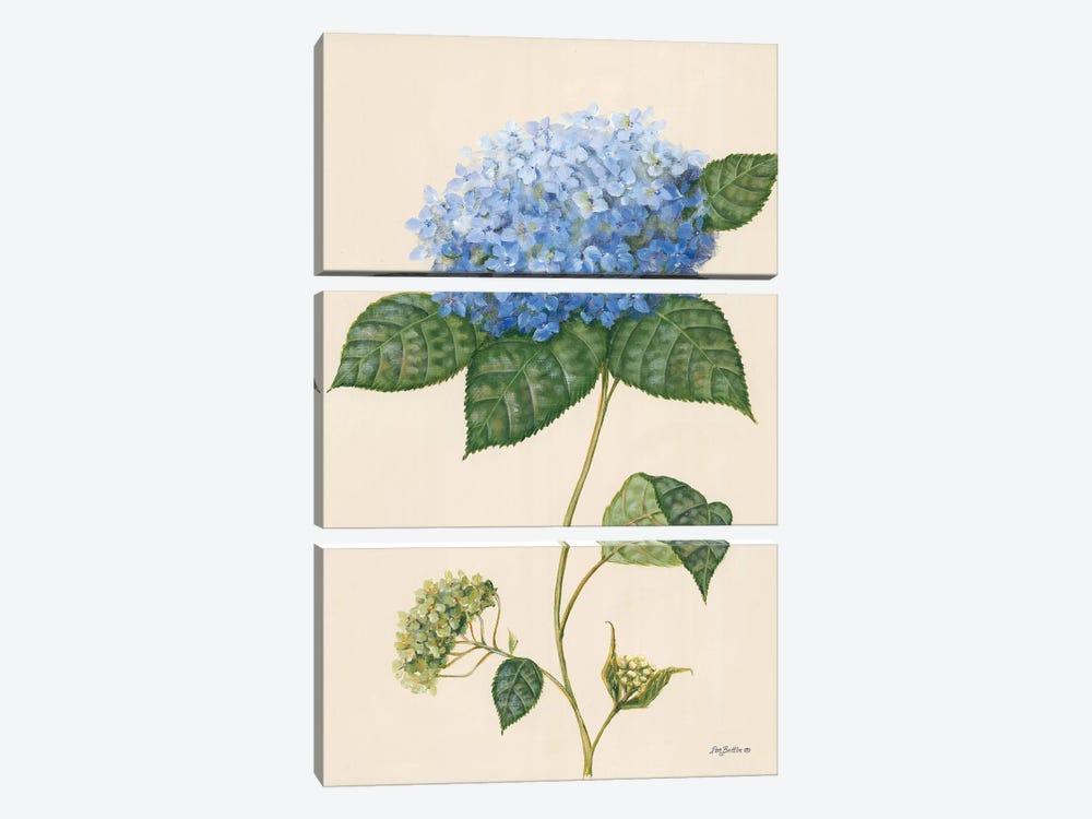 Blue Hydrangea by Pam Britton 3-piece Canvas Artwork