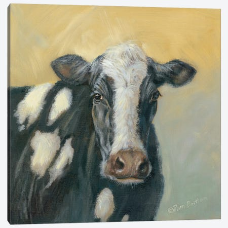 Pretty Cow Canvas Print #PBR20} by Pam Britton Canvas Art