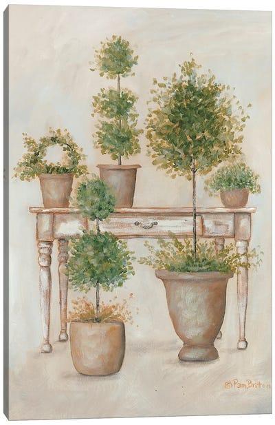 Potting Bench & Topiaries II Canvas Art Print