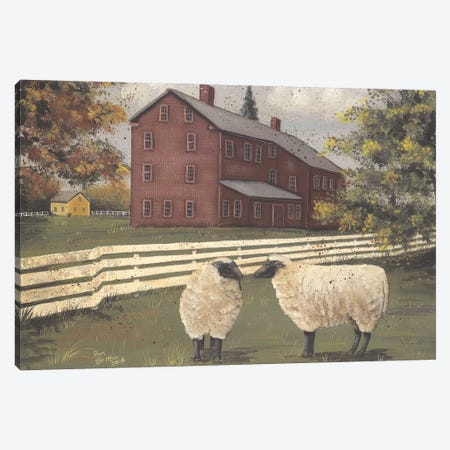 Hancock Sheep Canvas Print #PBR32} by Pam Britton Canvas Art Print
