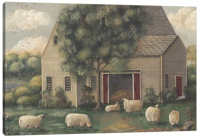 Sheep And House Canvas Art Print