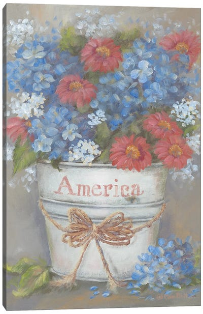 Rustic Red, White & Blue Canvas Art Print