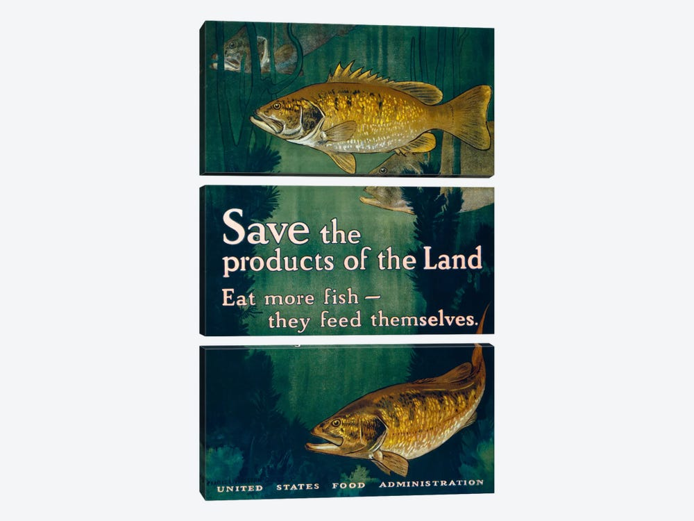 Eat More Fish by Print Collection 3-piece Canvas Artwork