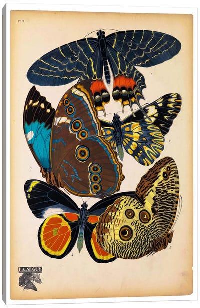 Butterflies Plate 10, E.A. Seguy Canvas Art Print