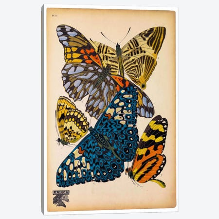Butterflies Plate 11, E.A. Seguy Canvas Print #PCA172} by E.A. Séguy Canvas Art Print