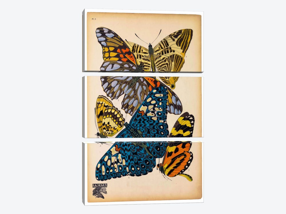 Butterflies Plate 11, E.A. Seguy by Print Collection 3-piece Art Print