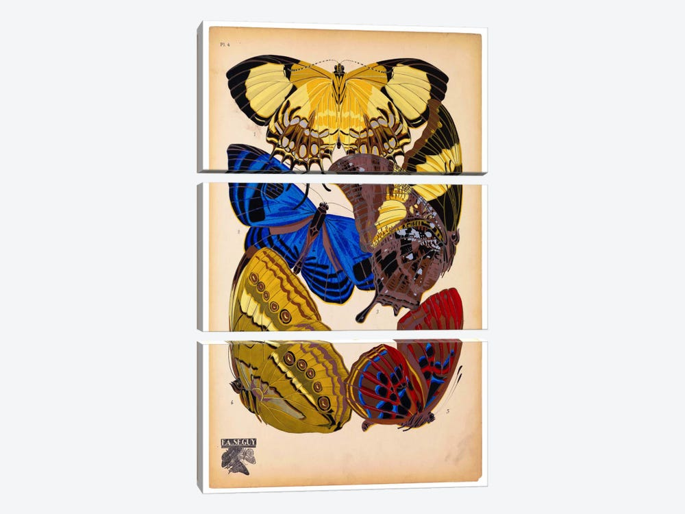 Butterflies Plate 12, E.A. Seguy by Print Collection 3-piece Canvas Artwork