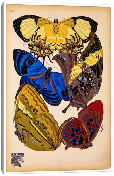 Butterflies Plate 12, E.A. Seguy Canvas Art Print