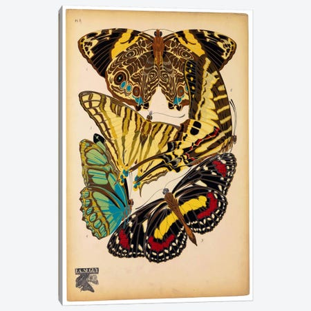 Butterflies Plate 13, E.A. Seguy 3-Piece Canvas #PCA174} by E.A. Séguy Canvas Artwork