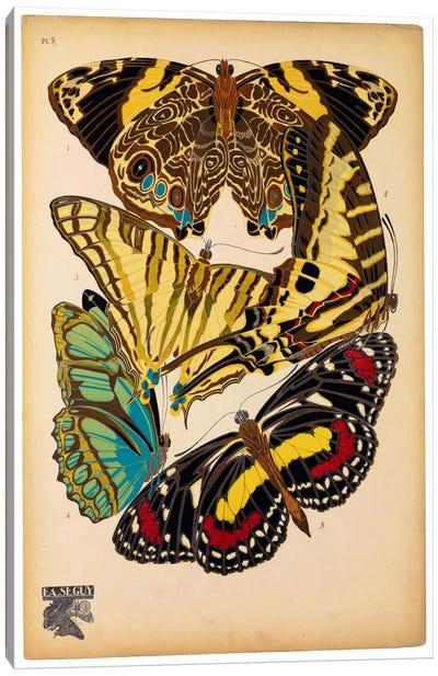 Butterflies Plate 13, E.A. Seguy Canvas Art Print