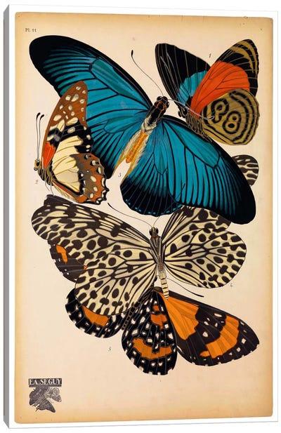 Butterflies Plate 2, E.A. Seguy Canvas Art Print