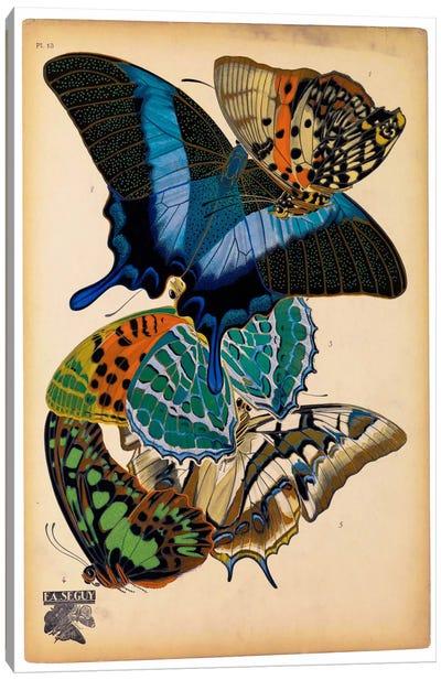 Butterflies Plate 4, E.A. Seguy Canvas Art Print