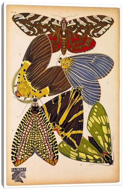 Butterflies Plate 5, E.A. Seguy Canvas Art Print