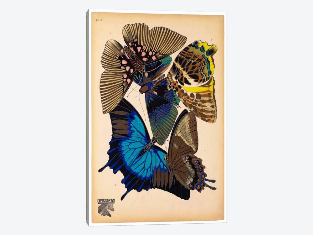 Butterflies Plate 9, E.A. Seguy by E.A. Séguy 1-piece Canvas Print