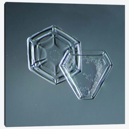 Hexagonal and Triangular Plate Snowflakes Canvas Print #PCA203} by Print Collection Canvas Print