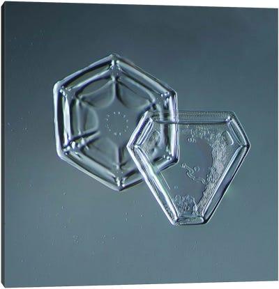 Hexagonal and Triangular Plate Snowflakes Canvas Art Print