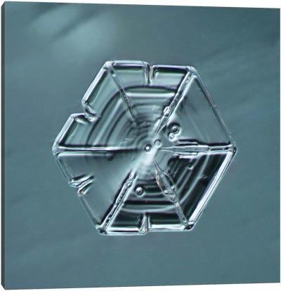 Hexagonal Plate Snowflake #1 Canvas Print #PCA204