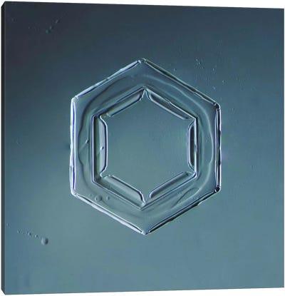 Hexagonal Plate Snowflake #2 Canvas Art Print