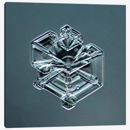 Hexagonal Plate Snowflake #3 Canvas Print #PCA206} by Print Collection Canvas Artwork
