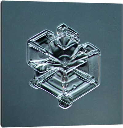 Hexagonal Plate Snowflake #3 Canvas Art Print