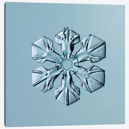 Sectored Plate Snowflake 001.3.02.2014 Canvas Print #PCA249} by Print Collection Canvas Art Print