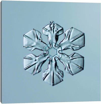 Sectored Plate Snowflake 001.3.02.2014 Canvas Art Print