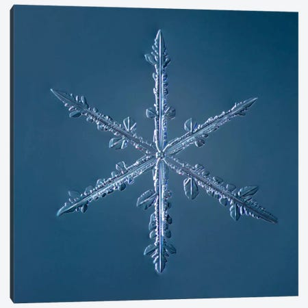 Simple Star Snowflake 002.2.16 Canvas Print #PCA250} by Print Collection Canvas Artwork