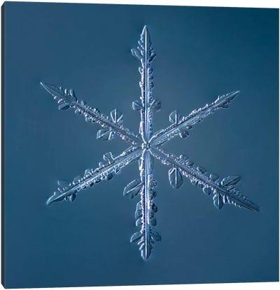 Simple Star Snowflake 002.2.16 Canvas Art Print