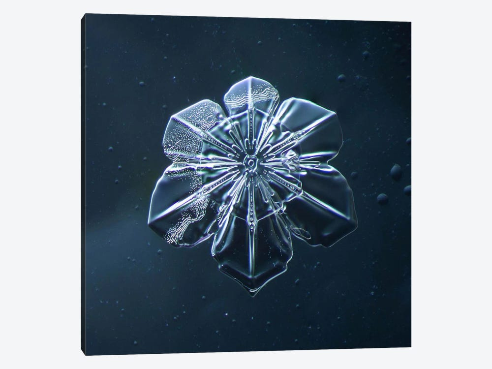 Snowflake 009.2.9.2014 by Print Collection 1-piece Canvas Art Print