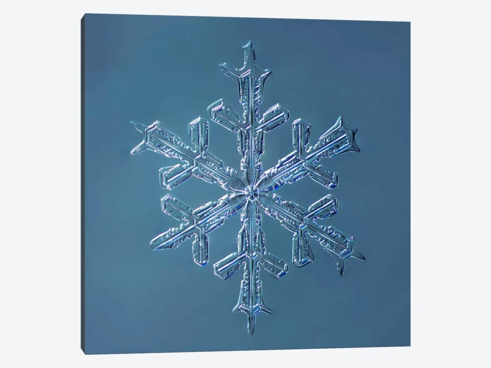 Stellar Dendrite Snowflake 001.2.16.2014 by Print Collection 1-piece Canvas Artwork
