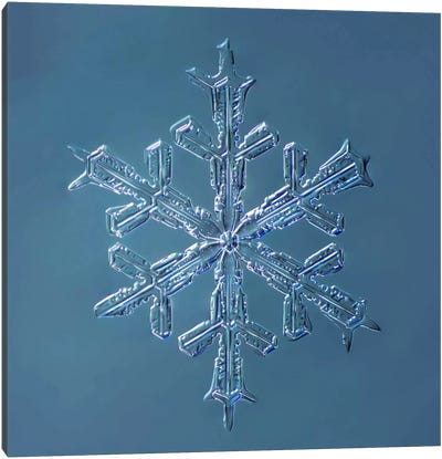 Stellar Dendrite Snowflake 001.2.16.2014 Canvas Art Print