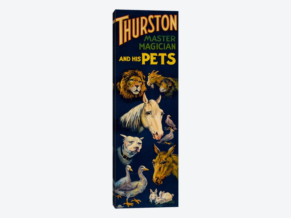 Thurston, and His Pets by Print Collection 1-piece Canvas Print