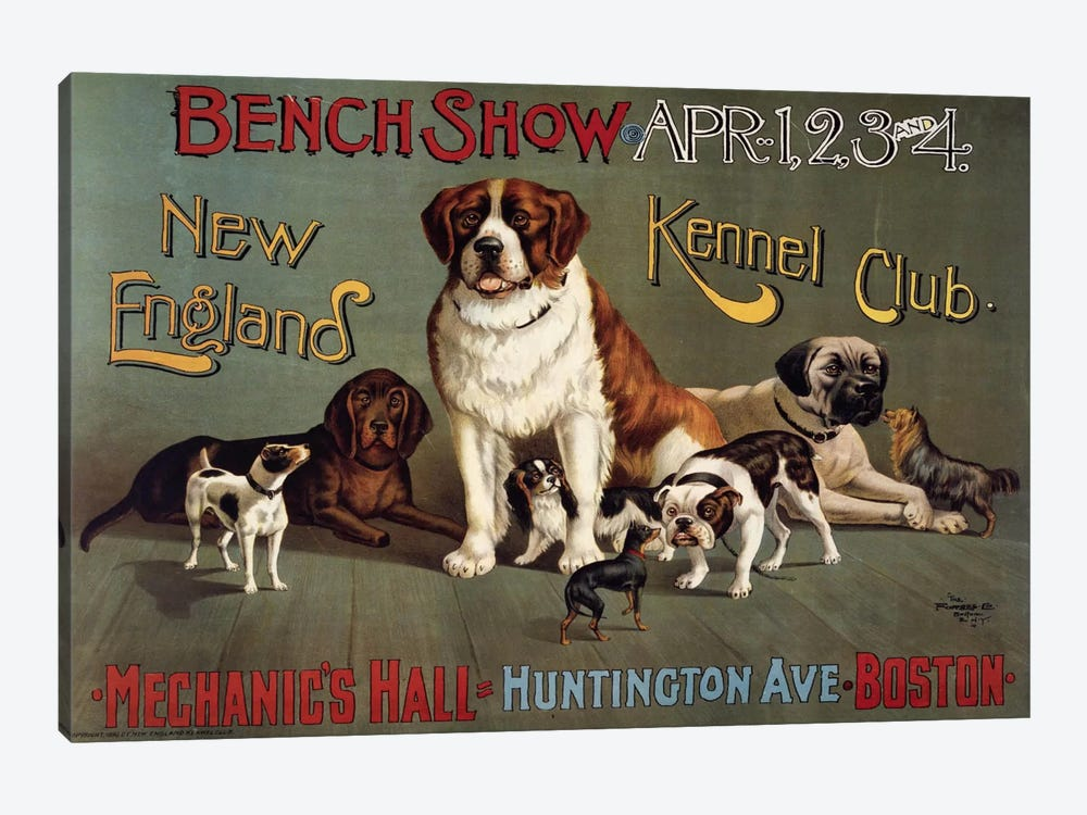 Bench Show. New England Kennel Club 1-piece Canvas Art