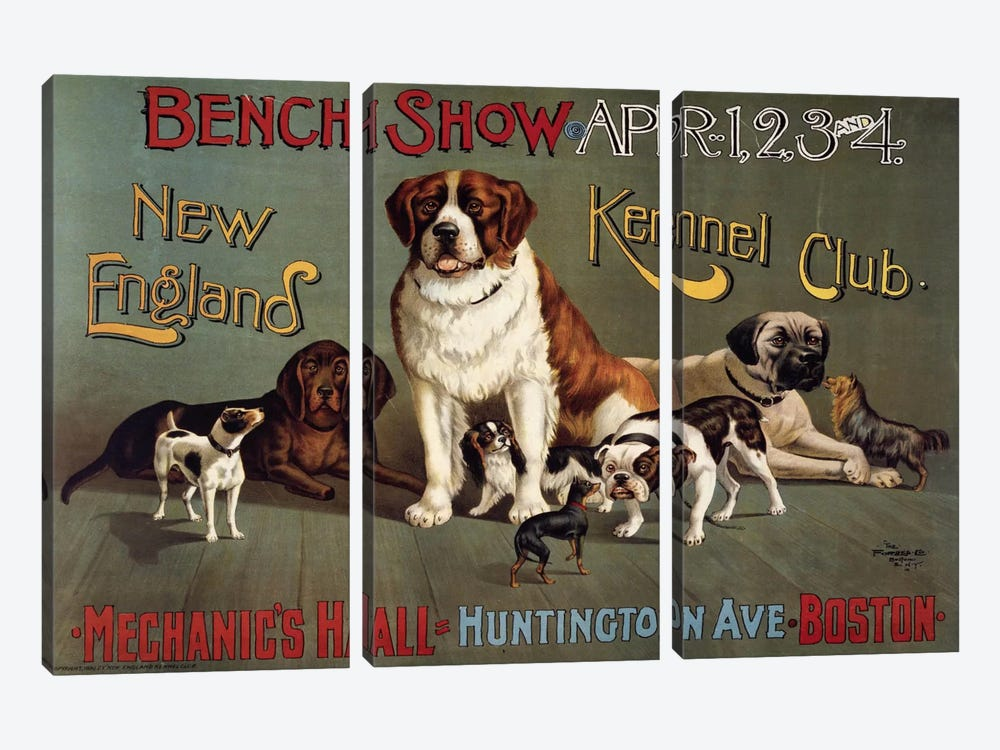 Bench Show. New England Kennel Club 3-piece Canvas Art