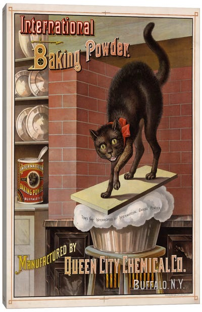 Catastrophe in the Kitchen, 1885 Canvas Print #PCA306