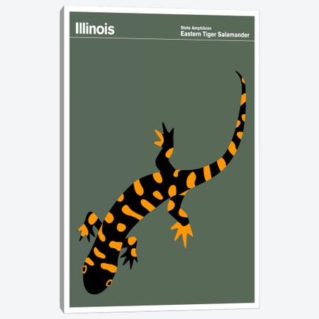 State Posters IL Canvas Print #PCA33} by Print Collection Art Print