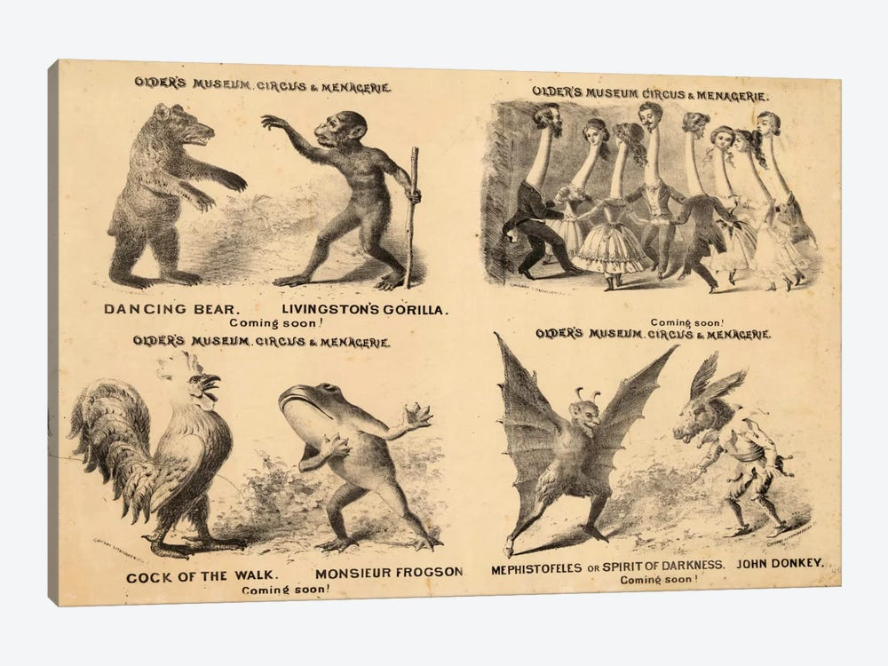 Older's Museum, Circus & Menagerie by Print Collection 1-piece Canvas Wall Art