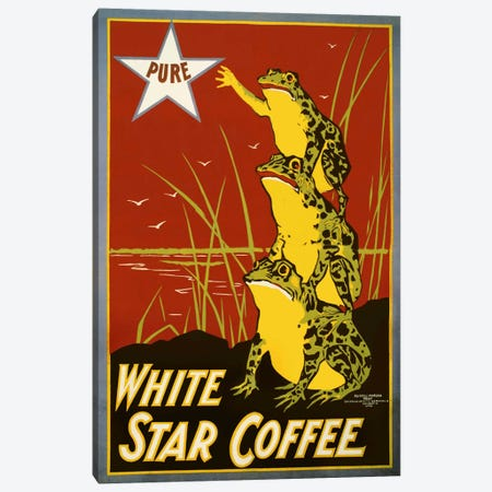 Pure White Star Coffee, Frogs Canvas Print #PCA371} by Print Collection Canvas Print