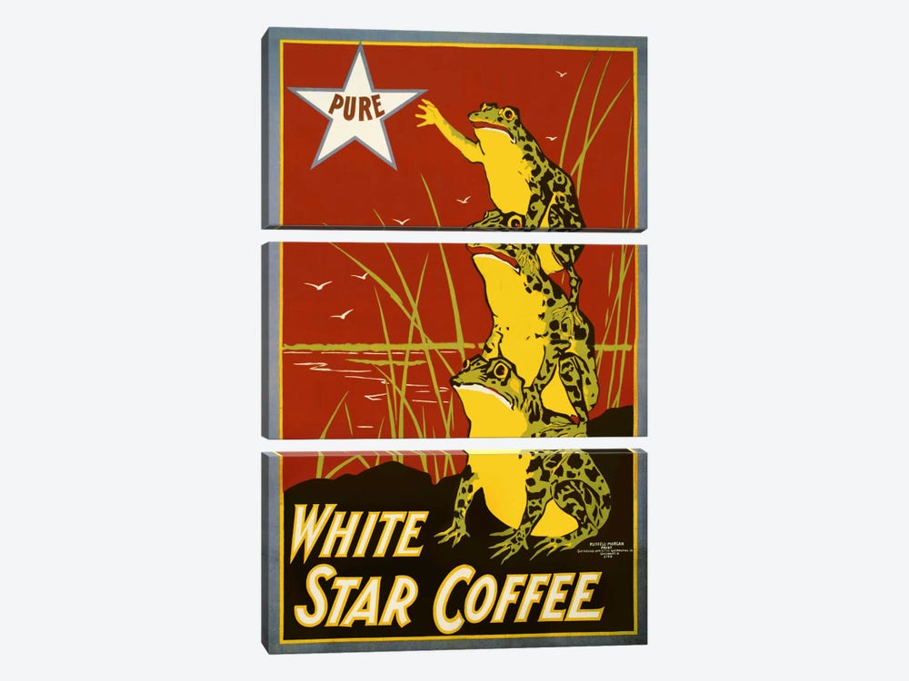 Pure White Star Coffee, Frogs by Print Collection 3-piece Art Print