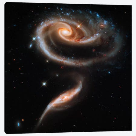 """A """"Rose"""" Made of Galaxies Highlights Hubble's 21st Anniversary Canvas Print #PCA404} by Print Collection Canvas Artwork"""