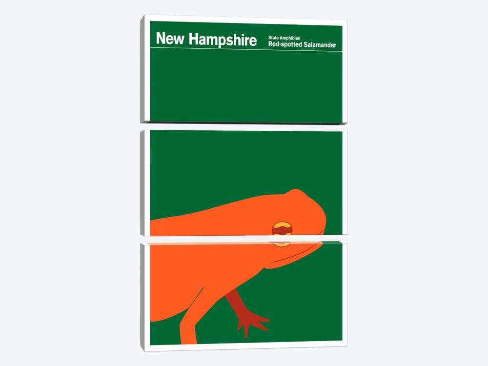 State Posters NH by Print Collection 3-piece Canvas Art
