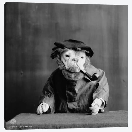 An Old Sea Dog, Literally Canvas Print #PCA441} by Print Collection Canvas Print