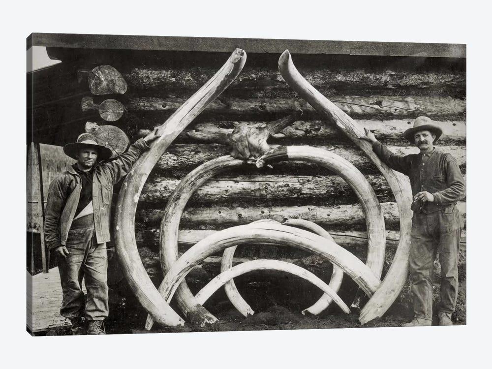 Ancient Bones of Mastodons by Print Collection 1-piece Canvas Art