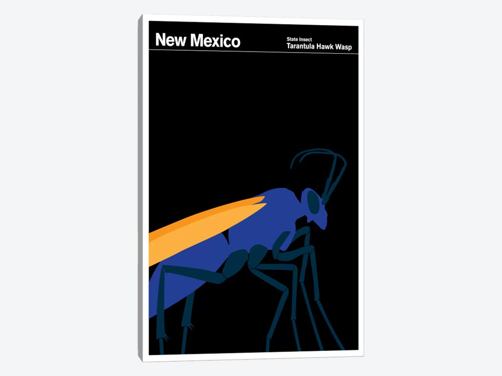 State Posters NM by Print Collection 1-piece Canvas Print